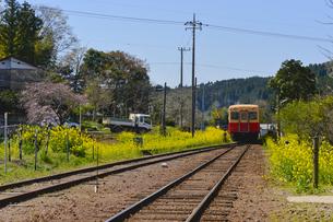 小湊鉄道高滝駅付近を走る電車の素材 [FYI01001341]