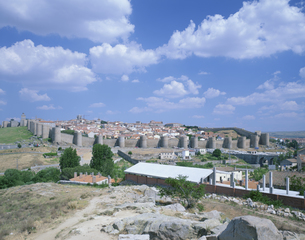 アヴィラの城壁の素材 [FYI01003767]
