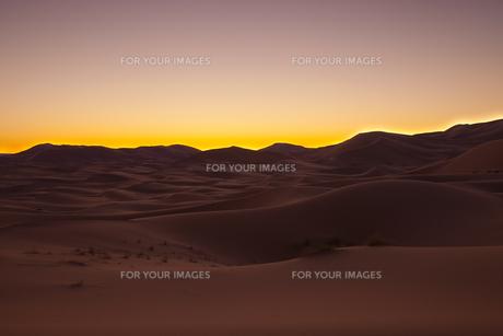 サハラ砂漠 夜明けの素材 [FYI01005201]