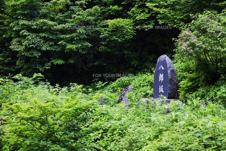 八郎坂登山道の標識の素材 [FYI01006102]