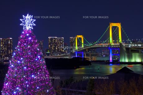 ライトアップしたレインボーブリッジとクリスマスツリーの素材 [FYI01011274]