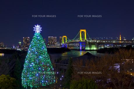 ライトアップしたレインボーブリッジとクリスマスツリーの素材 [FYI01011351]