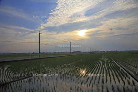田園の広がる風景(夕景)の素材 [FYI01012283]