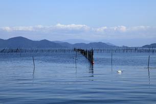琵琶湖とエリ網漁の素材 [FYI01012534]