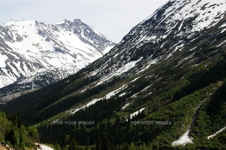 ホワイトパス・ユーコン鉄道の列車から望む山並みの素材 [FYI01013413]