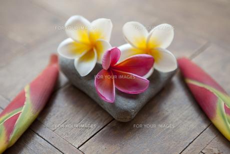 石と花のイメージの素材 [FYI01014807]