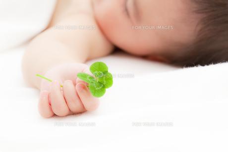 四葉のクローバーを持つ赤ちゃんの素材 [FYI01016540]