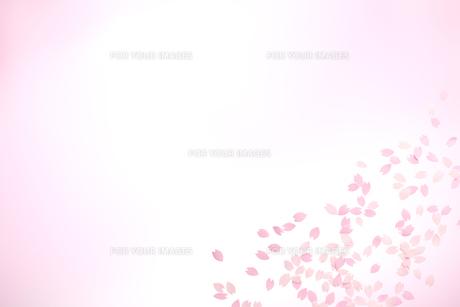 桜の花びらの春イメージの素材 [FYI01016613]