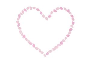 桜の花びらで作ったハートの素材 [FYI01016635]