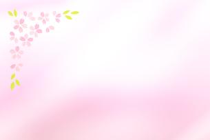 桜の花びらの春イメージの素材 [FYI01016695]