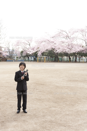 桜咲く校庭で卒業式の小学生の素材 [FYI01018481]