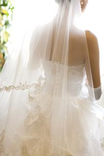 ウエディングドレスを着て結婚式へと向かう花嫁の後姿の素材 [FYI01018865]