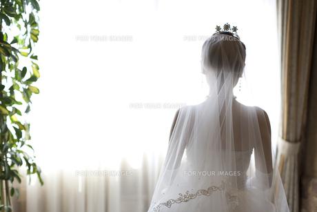 ウエディングドレスを着て結婚式へと向かう花嫁の後姿の素材 [FYI01018886]