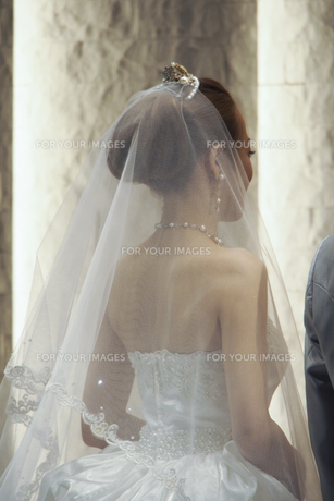 結婚式でウエディングドレスの新婦の後ろ姿の素材 [FYI01018944]