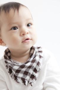 幼い男の子のポートレートの素材 [FYI01020121]