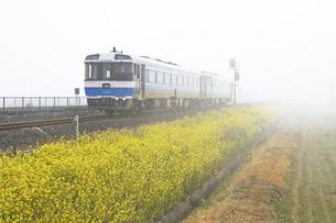 春の予讃線列車の素材 [FYI01020843]