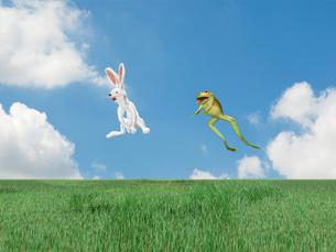 跳ねるウサギとカエルの素材 [FYI01021059]