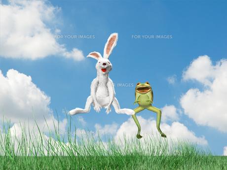 跳ねるウサギとカエルの素材 [FYI01021070]
