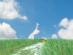 川で遊ぶウサギとカエルの素材 [FYI01021085]