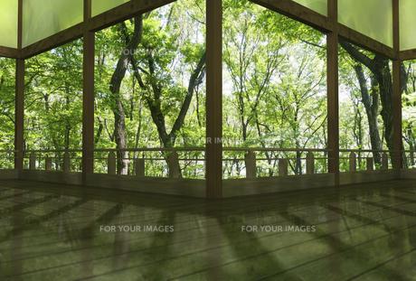 夏の和風建物の渡り廊下の素材 [FYI01021292]