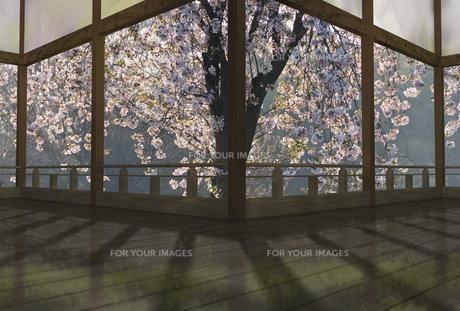 春の和風建物の渡り廊下の素材 [FYI01021376]