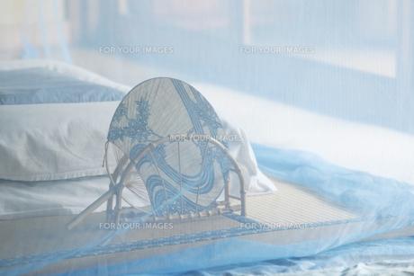 和室に蚊帳の素材 [FYI01025709]