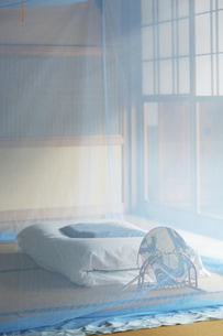 和室に蚊帳の素材 [FYI01025779]