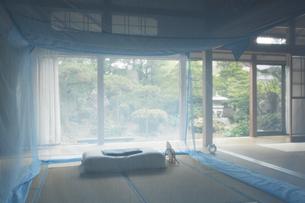 和室に蚊帳の素材 [FYI01025821]