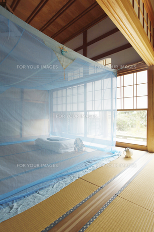 和室に蚊帳の素材 [FYI01025833]