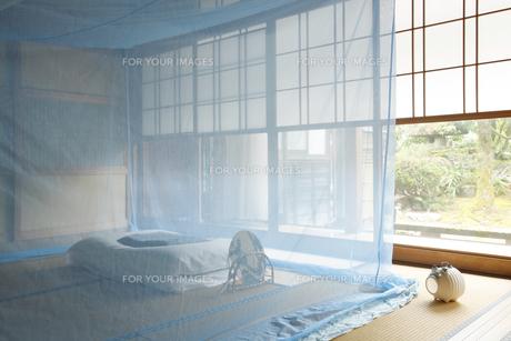 和室に蚊帳の素材 [FYI01025899]