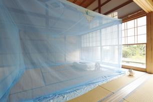 和室に蚊帳の素材 [FYI01025982]