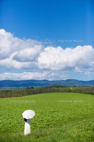 草原の中で雲を眺める日傘をさした女性の素材 [FYI01030303]
