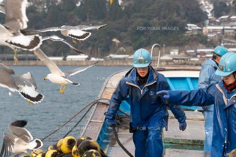作業する漁師の素材 [FYI01030324]