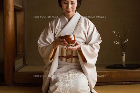 茶道を嗜む50代女性の素材 [FYI01030337]