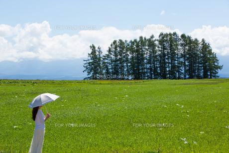 雲を眺める日傘をさした女性の素材 [FYI01030364]