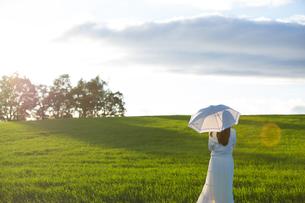 夕日を眺める日傘をさした女性の素材 [FYI01030368]