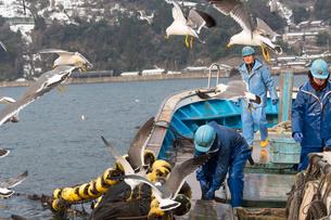 作業する漁師の素材 [FYI01030381]