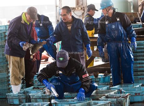 作業する漁師の素材 [FYI01030387]