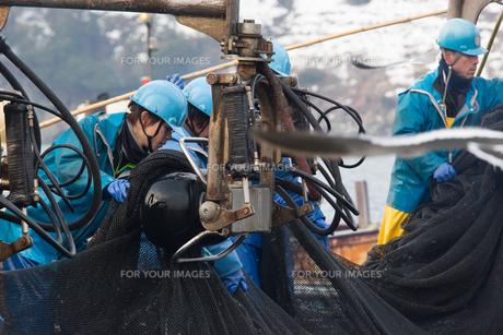 漁師の素材 [FYI01030390]