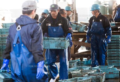 作業する漁師の素材 [FYI01030448]