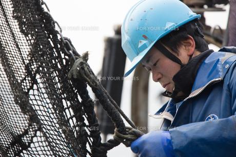 作業する漁師の素材 [FYI01030459]