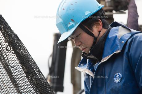 作業する漁師の素材 [FYI01030506]
