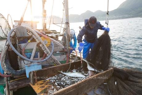 定置網漁の男性の素材 [FYI01030534]