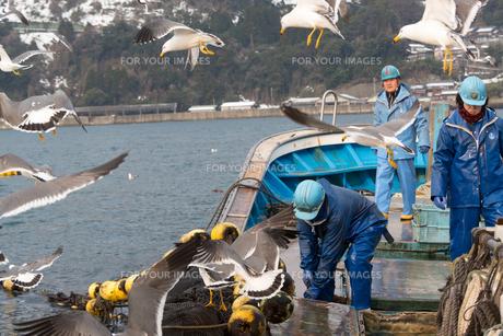 作業する漁師の素材 [FYI01030540]