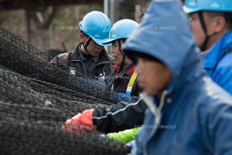 作業する漁師の素材 [FYI01030545]