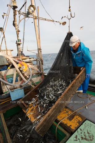 定置網漁の男性の素材 [FYI01030556]