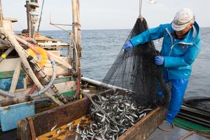 定置網漁の男性の素材 [FYI01030557]