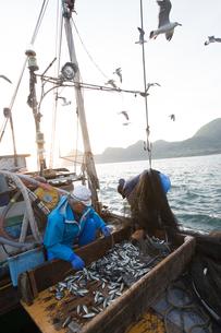 定置網漁の男性の素材 [FYI01030577]