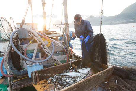 定置網漁の男性の素材 [FYI01030586]