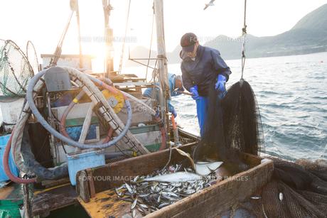 定置網漁の男性の素材 [FYI01030587]